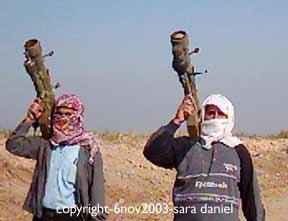 Sara Daniel's Iraqi resistance