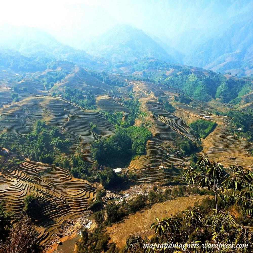 Sapa rice paddies
