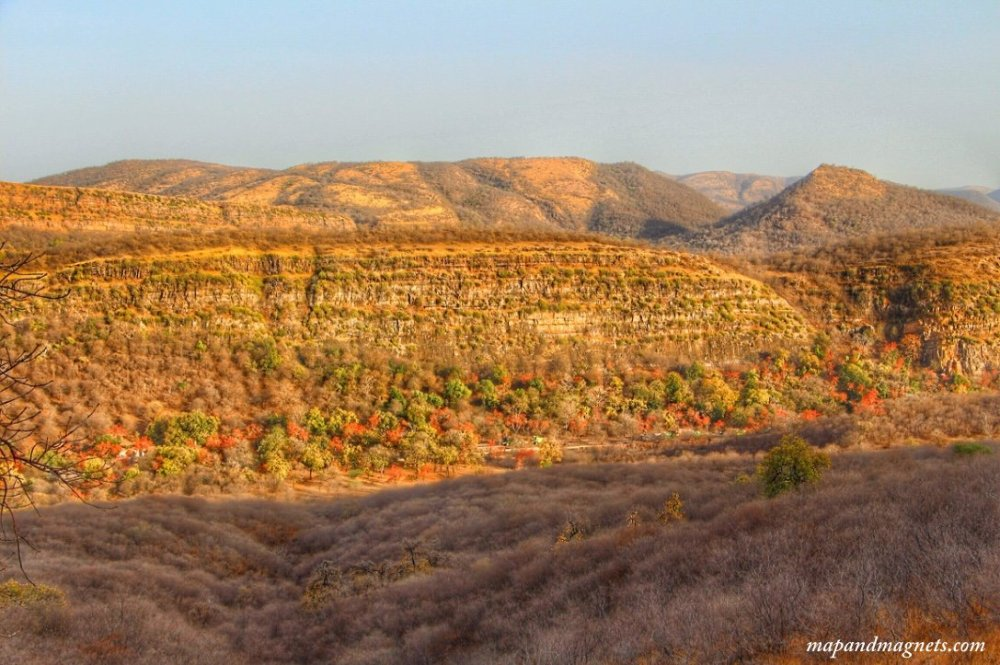 Summers are dry in Ranthambore, but there's still something so magical about it!