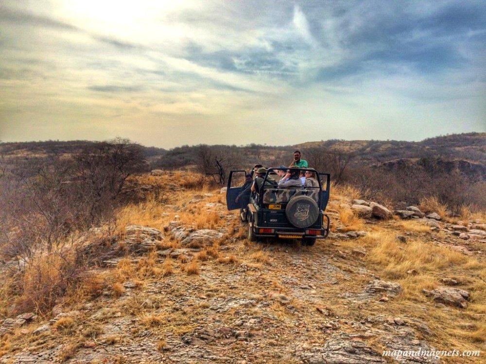 Ranthambore jeep in barren land