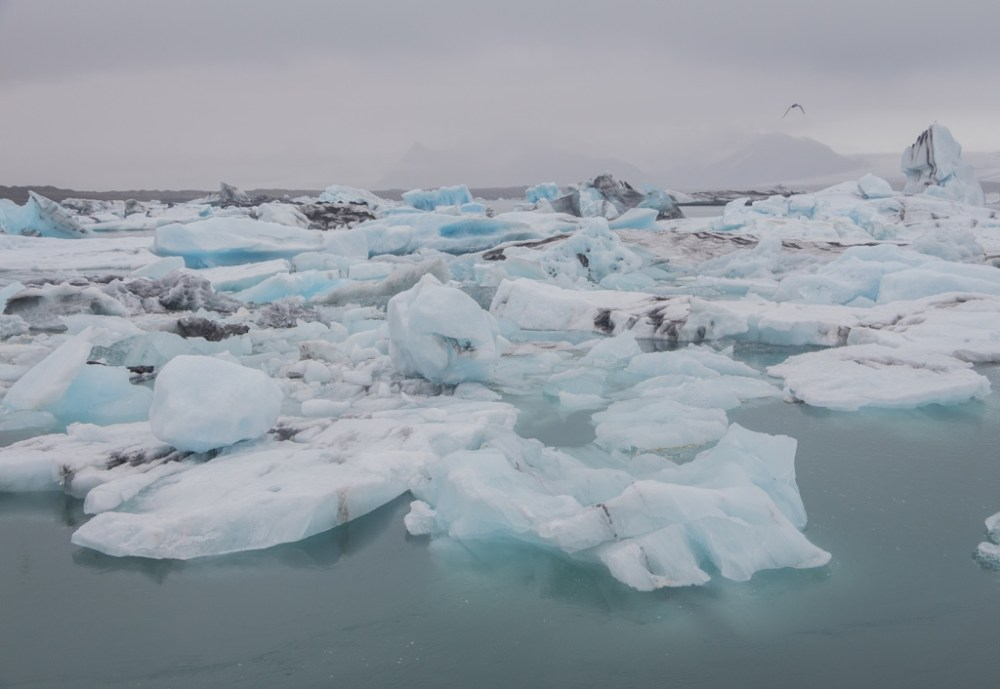 Jokulsarlon glacier lagoon in Iceland is surreal