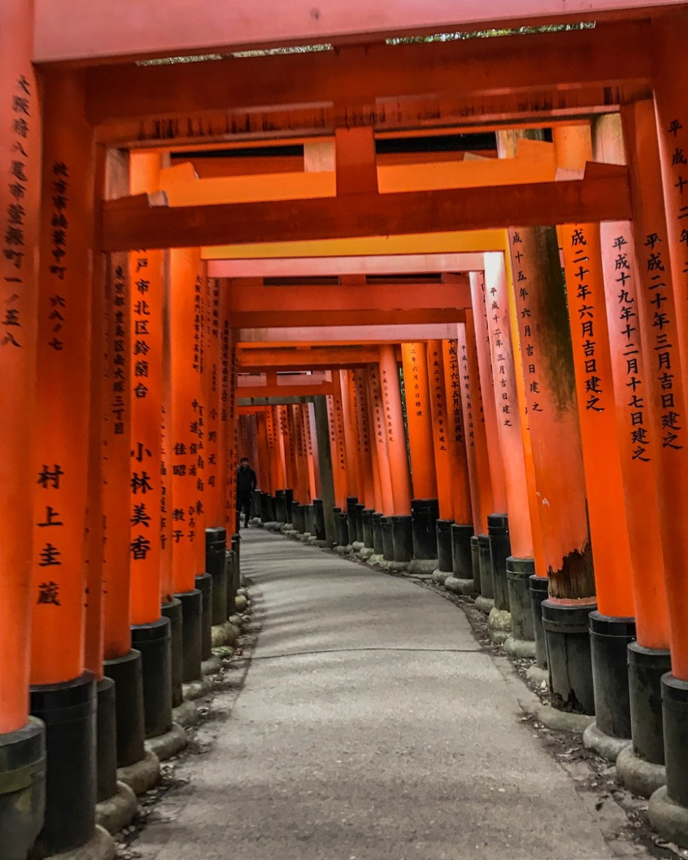Fushimi Inari is a collection of shrines in Japan