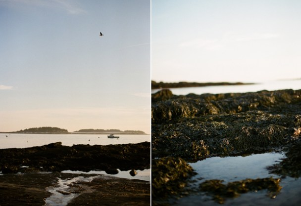 Kettle Cove on Film