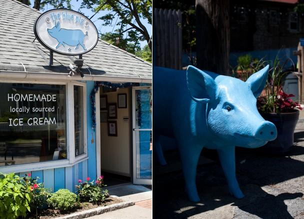 The Blue Pig Croton-on-Hudson