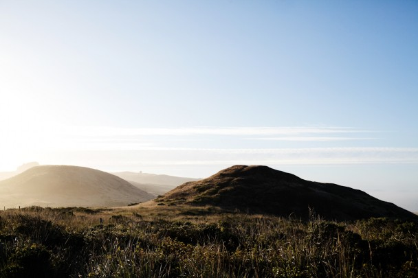 Sonoma Coast State Park Kortum Trail