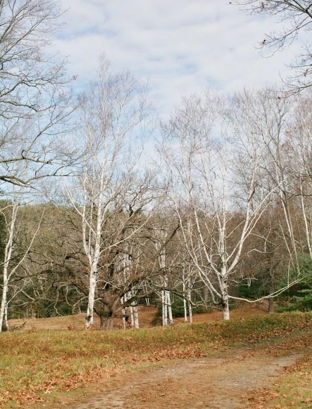 Maudslay State Park MA