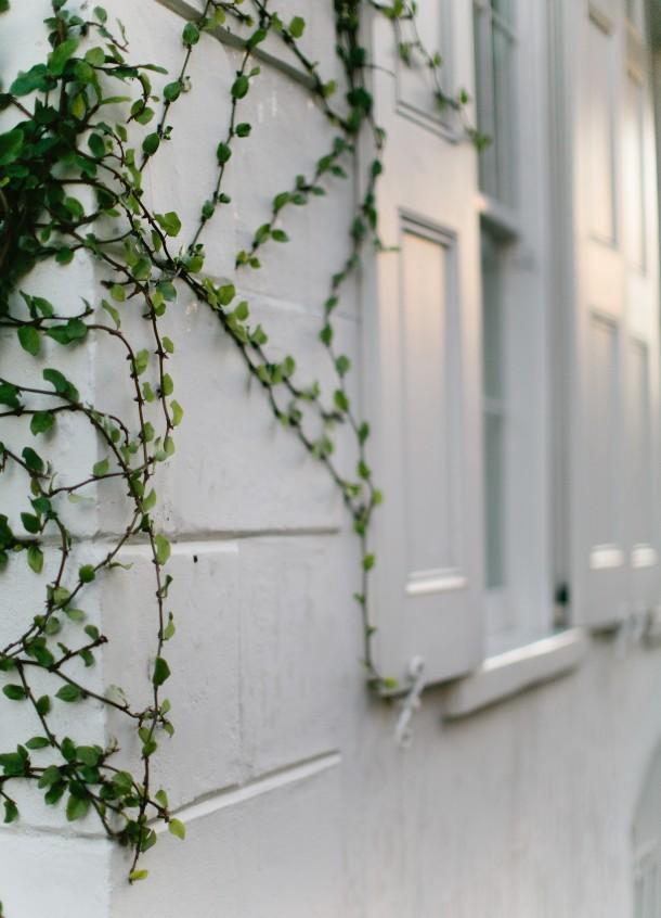 Charleston-SC-Images