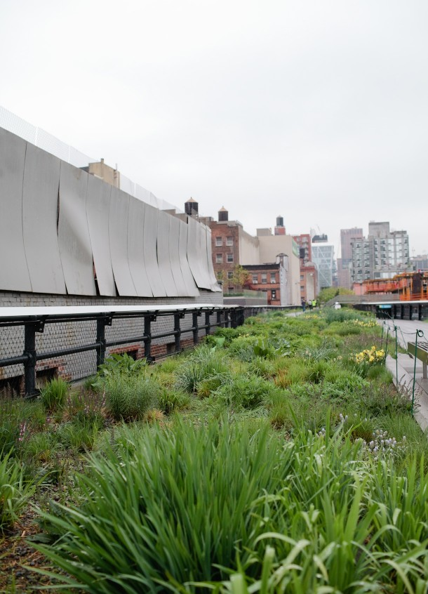 The High Line NY