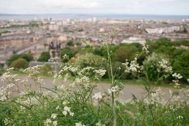 Calton Hill Scotland
