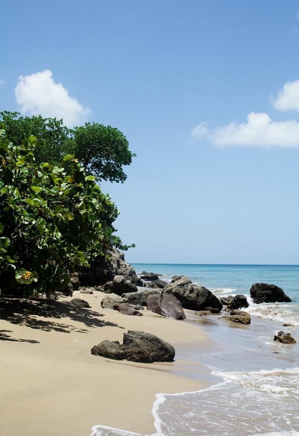 Nevis Beaches