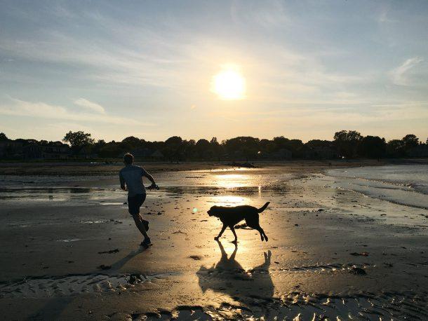 Willard Beach