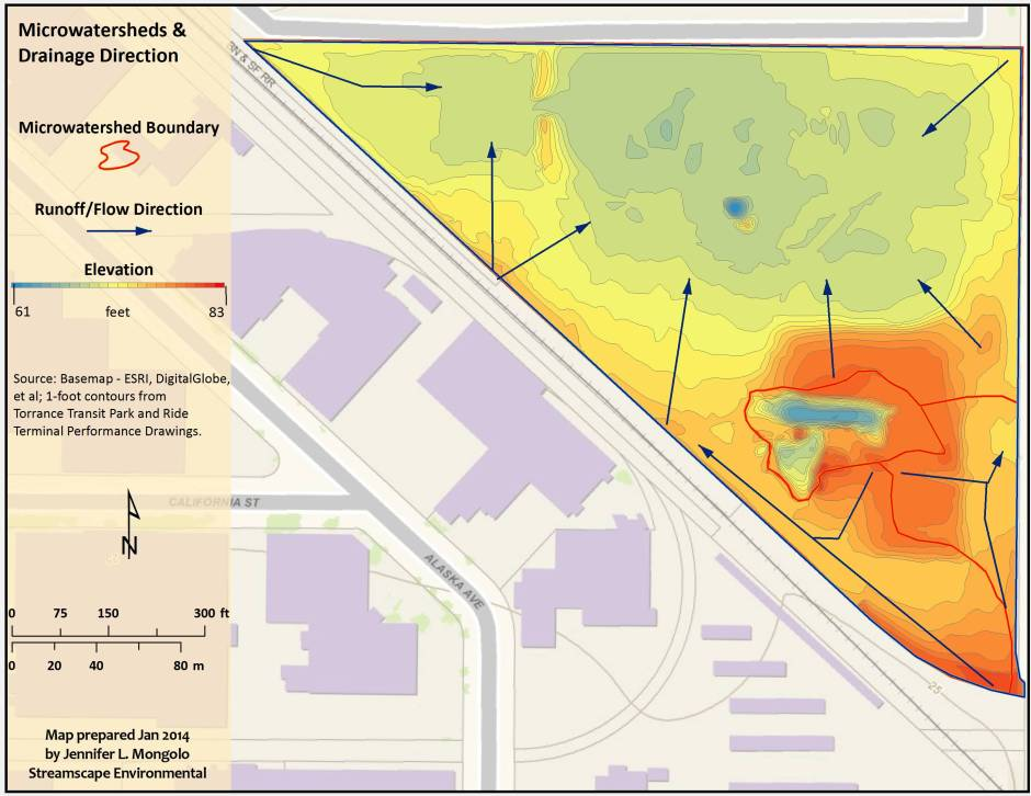Site topography and drainage