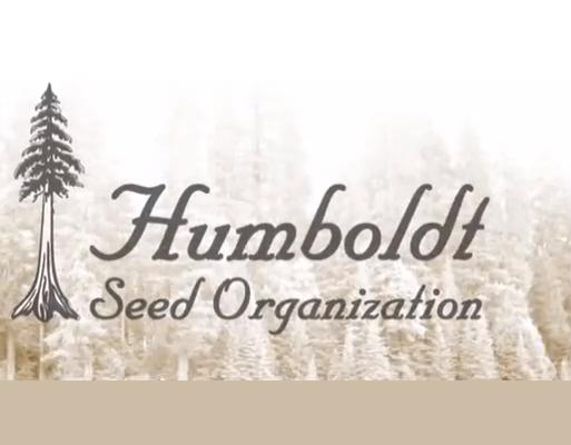 Humbolt seeds organisation