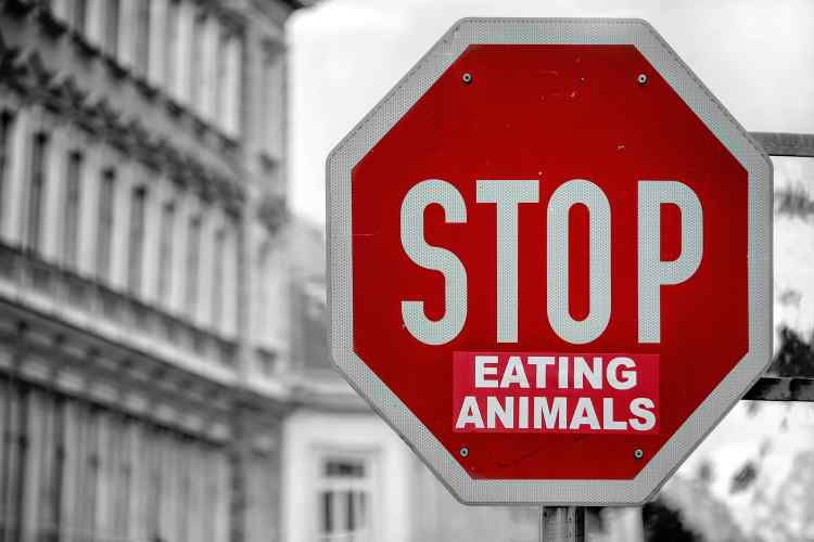Panneau ''Stop Eating Animals''