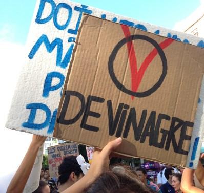 Mapingua Nerd - Manifestação Junho de 2013 Manaus (6)