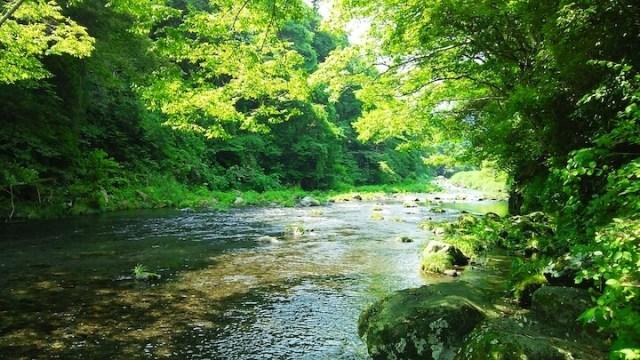 るり渓 川遊び
