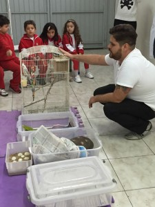 vet and the animals