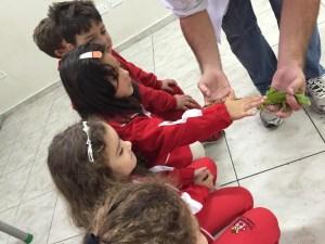 vet yumi iguana