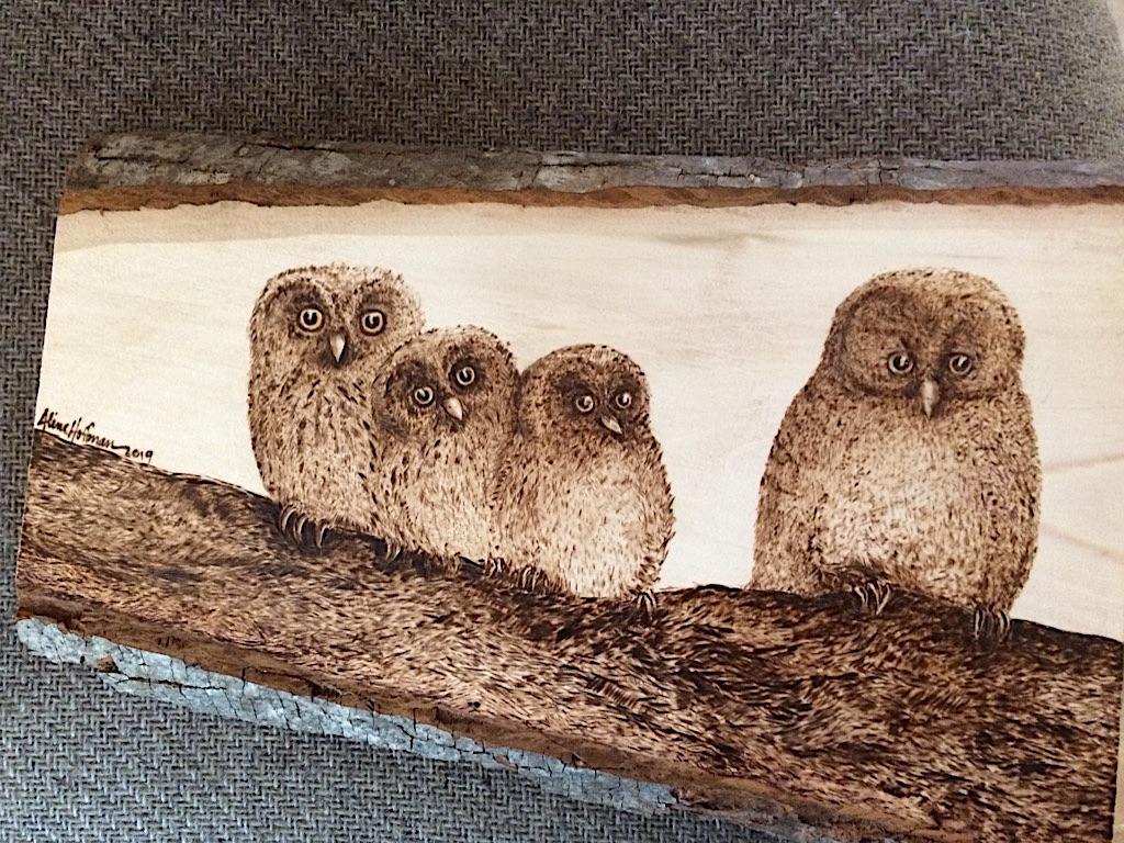 Boreal Owl Family Pyrography