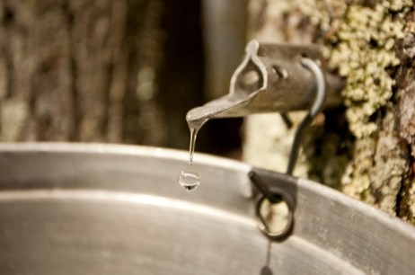 Syrup Process