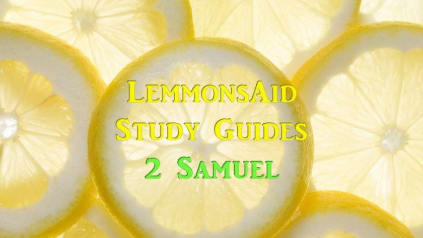 LemmonsAid Study Guides