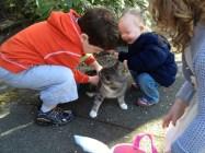 TK and Liam pet Kitty Jasper