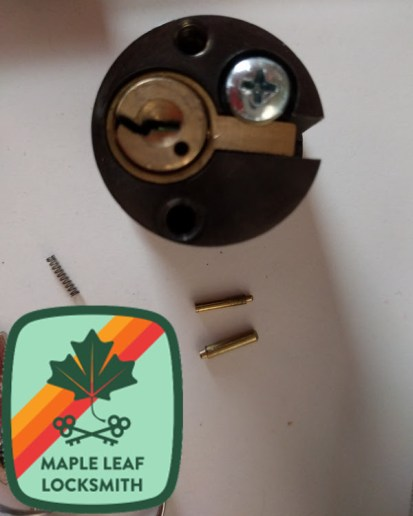 The pin on the top is an Emtek cylinder cap retainer pin. The more robust lower one is a Schlage pin.