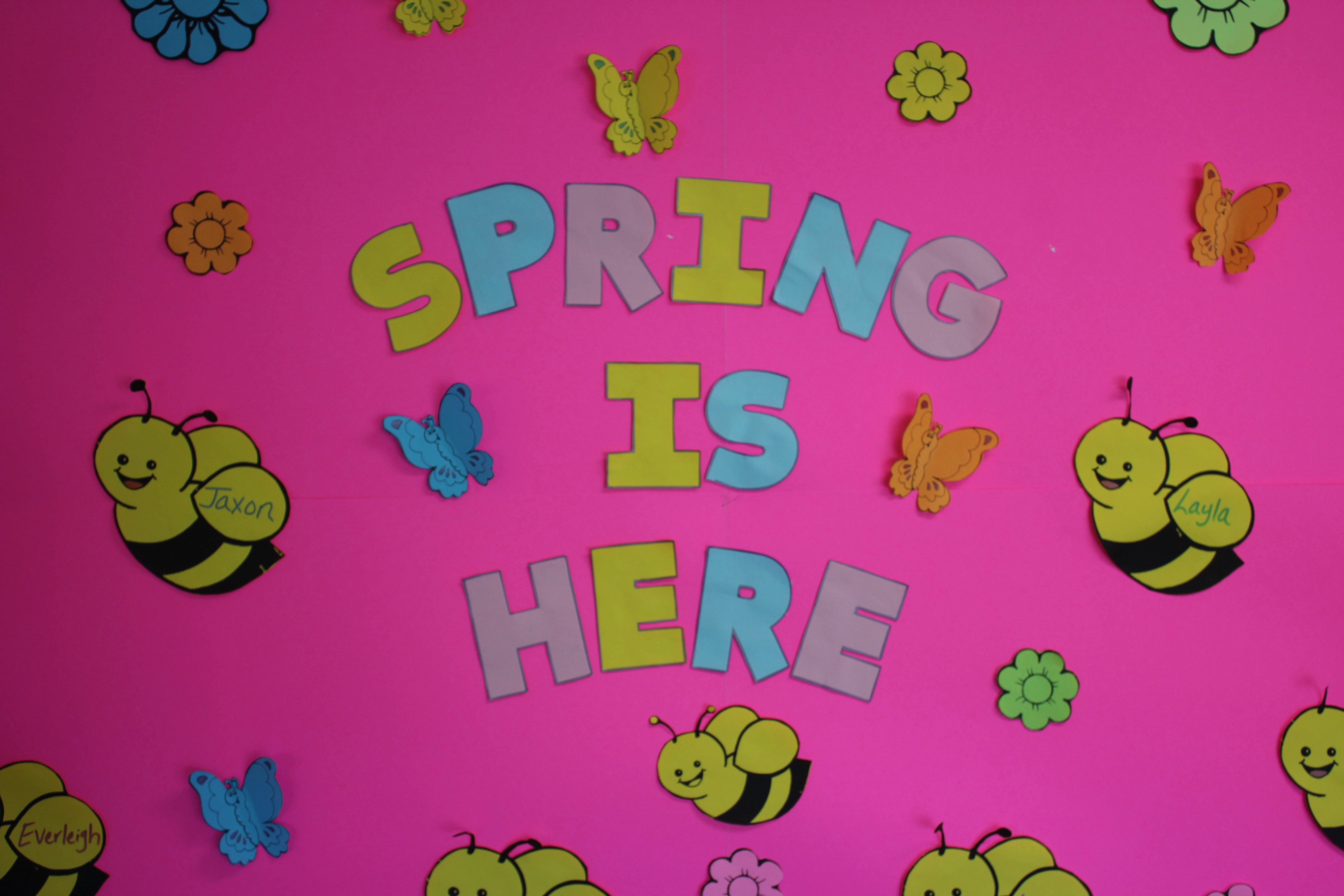 """A picture of a sign that says """"spring is here"""" complete with butterfly and bumblebees"""