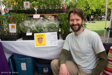 Plant starts for sale at the Salt Spring Saturday Market
