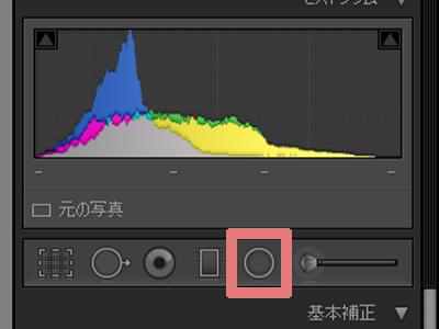 LightroomClassicで一部の色を変える方法【部分的な色相補正】