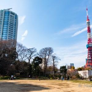 芝公園 東京タワー 前撮りスポット おすすめ