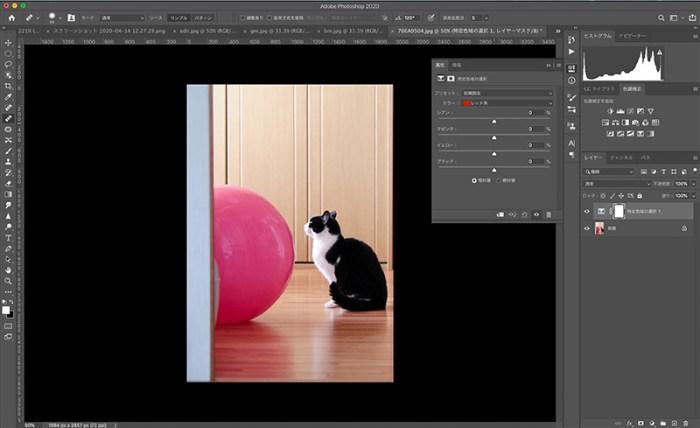 Photoshopで写真の一部の色を変える方法
