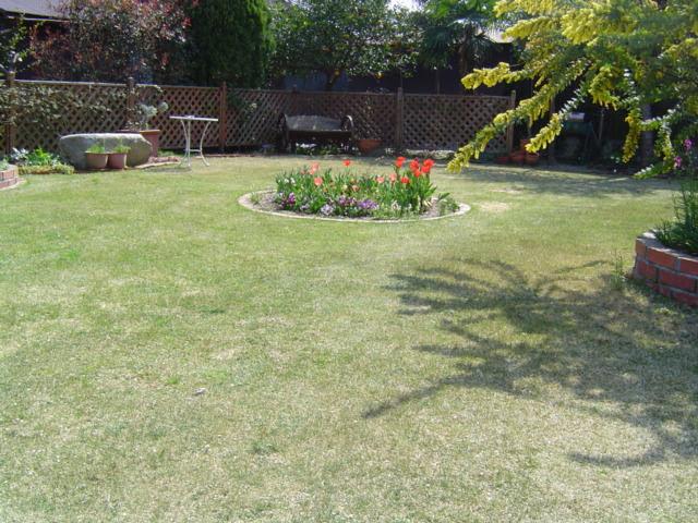 芝生の色が薄い原因と対処法①肥料不足