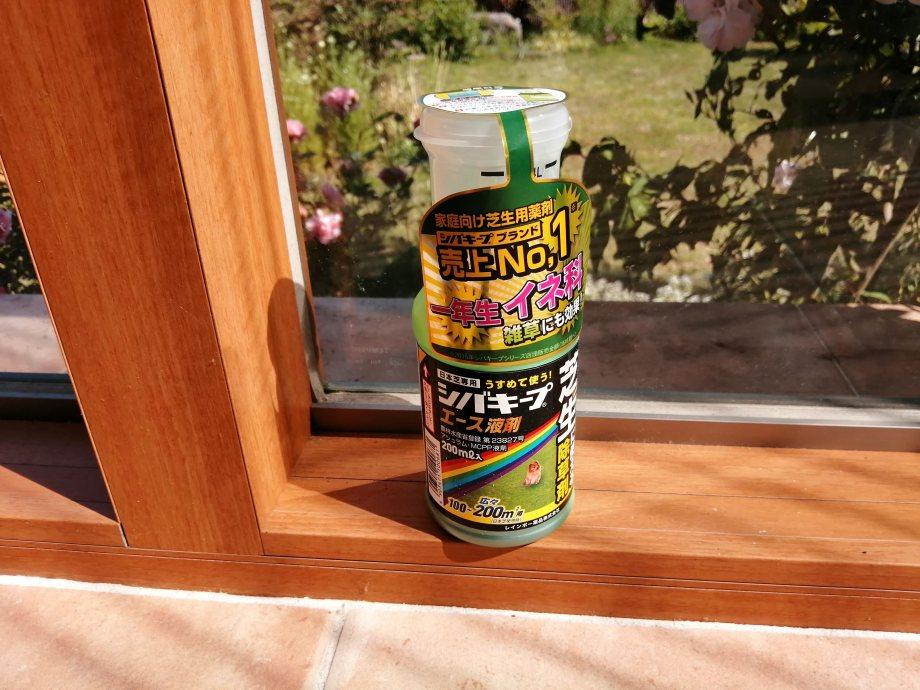 芝生に生える雑草チドメグサは除草剤で駆除すべし