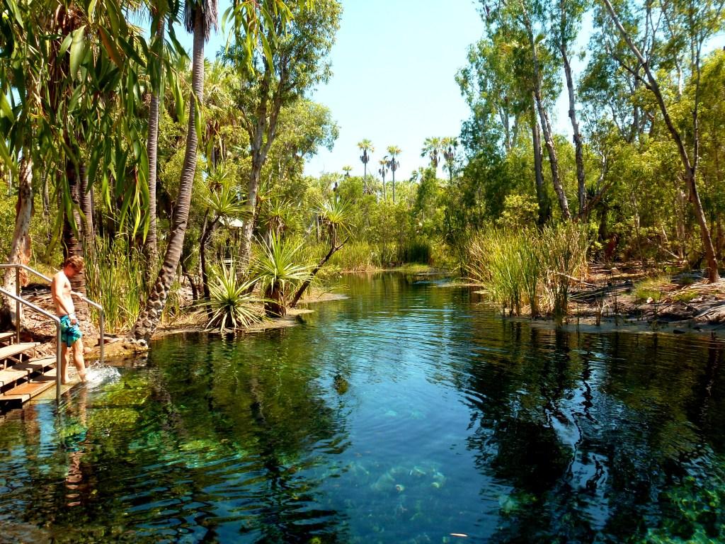Mataranka Bitter Springs