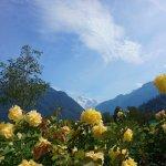 Top 8 Interlaken, Switzerland Adventure Activities