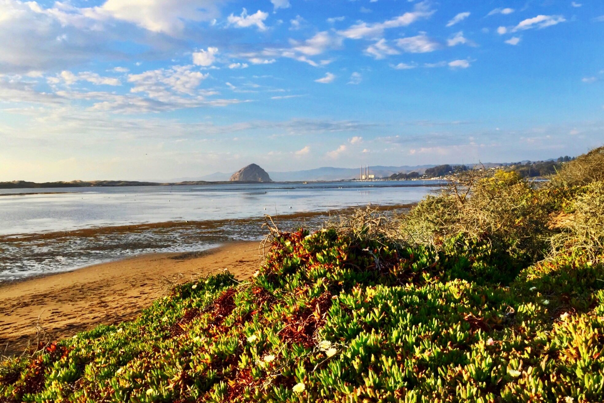 8 day Pacific Coast Highway road trip itinerary - Morro Bay