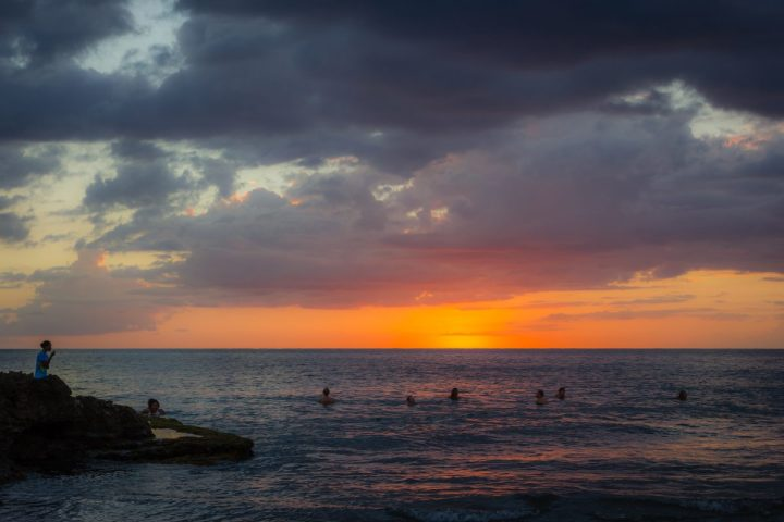 jamaica mycomeditations sea landscape shrooms
