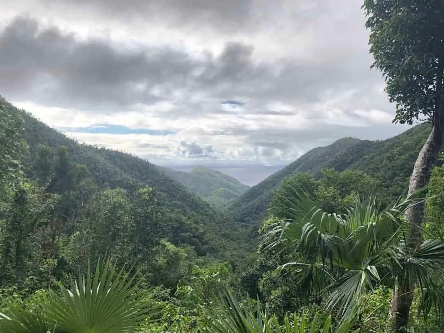 Reef-Bay-Trail-Overlook