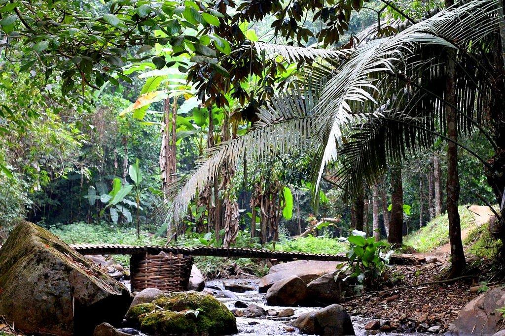 Bamboo bridge - Khun Korn Waterfall, Chiang Rai, Thailand