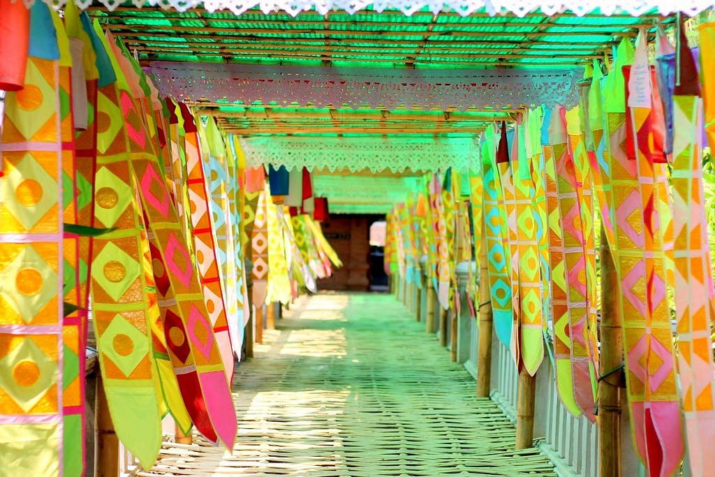 bamboo tunnel - Canon 50mm lense