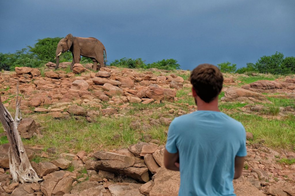 Unusual Christmas Destinaitons - Zimbabwe
