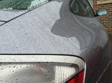 Water Beading On Porsche 911 Bodywork