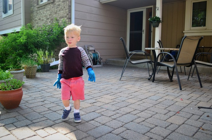 Preschooler boy with work gloves on
