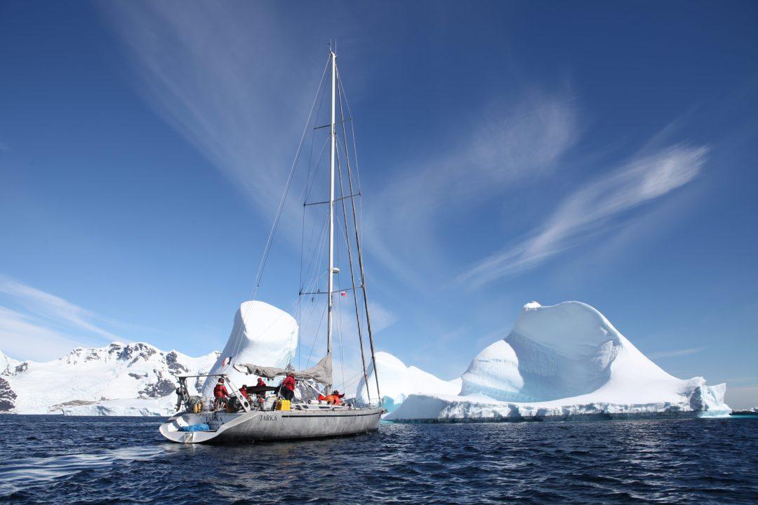 TARKA près des icebergs en Antarctique