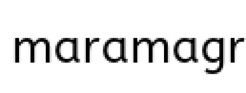 Google Calendar Mara