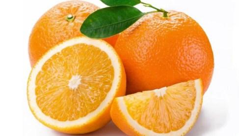 Image result for संत्री
