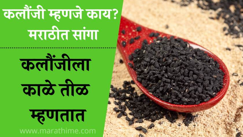कलौंजी-म्हणजे-काय-मराठी-कलौंजीचे-फायदे-आणि-नुकसान-Kalonji-in-Marathi