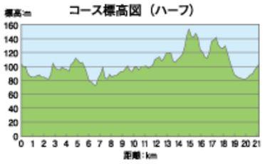 所沢シティマラソン コース 高低差