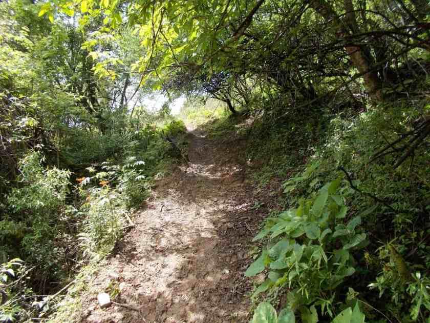 Global Limits Bhutan - The Last Secret - 200km Race Report 49